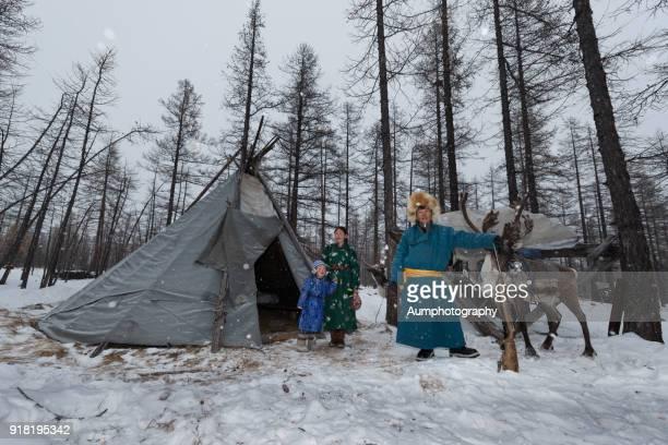 tsaatan reindeer people, mongolia - モンゴル ストックフォトと画像