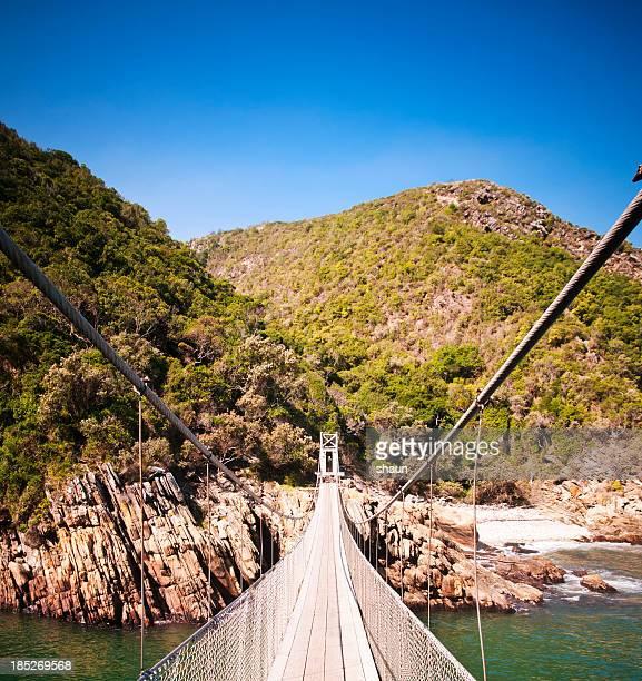 ponte tsitsikamma - parque nacional - fotografias e filmes do acervo
