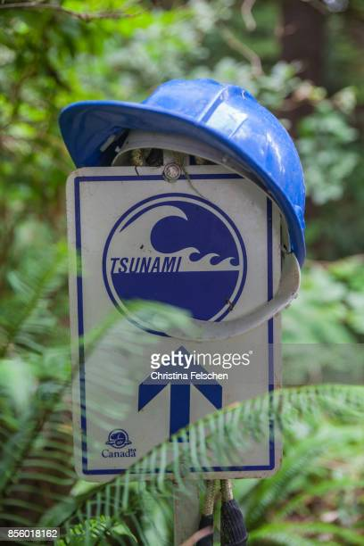 tsunami escape route signpost, west coast trail, canada - christina felschen stock pictures, royalty-free photos & images