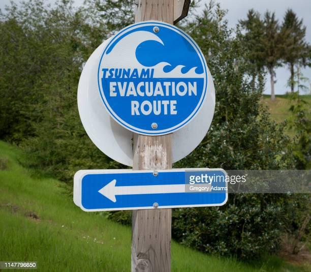 tsunami evacuation route sign on the oregon coast - pazifik stock-fotos und bilder