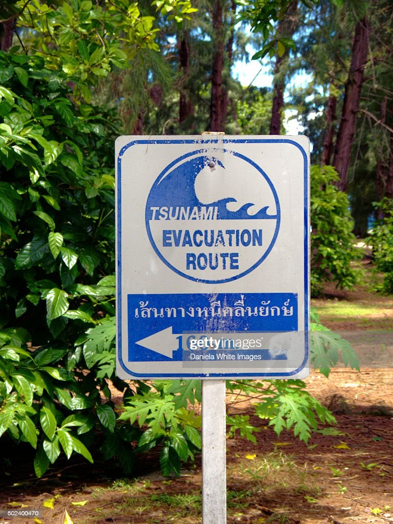 tsunami evacuation sign high