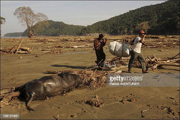 Tsunami Survivors On Western Coast Of Aceh On January 6 2005 In Indonesia Isolated Refugees On The Western Coast Have Been Waiting For Help For Ten...