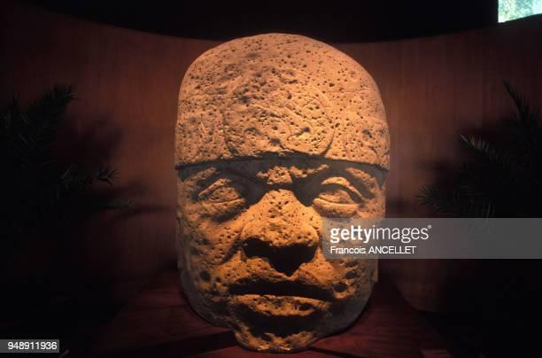 Tête olmèque au musée d'anthropologie de Mexico au Mexique en 1998
