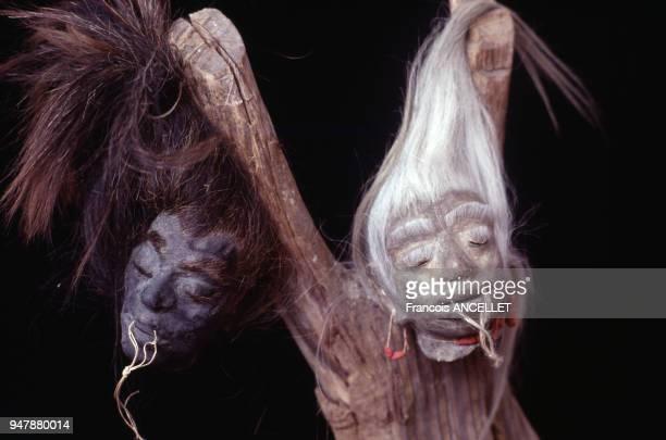 Têtes réduites d'indien Shuar Jivaro en Equateur en 1991