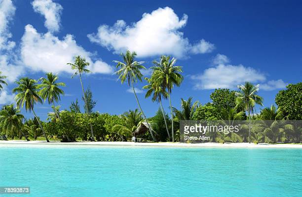 Tuamotu Islands, Polynesia