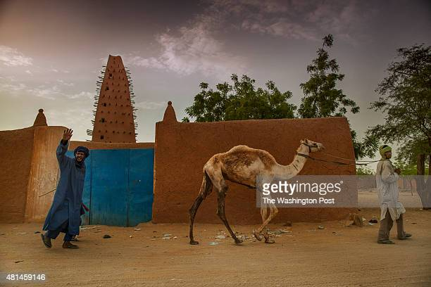 AGADEZ NIGER Tuareg camel traders walk past the Agadez Mosque Originally built in 1515 this mosque was restored in 1844 and is a central landmark in...