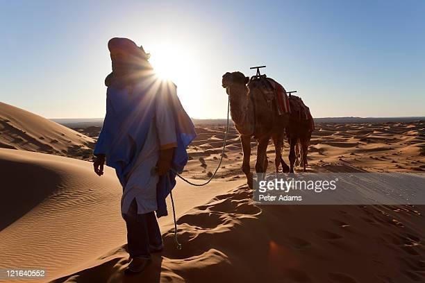 tuareg camel train, sahara desert, morocco - tuaregue imagens e fotografias de stock