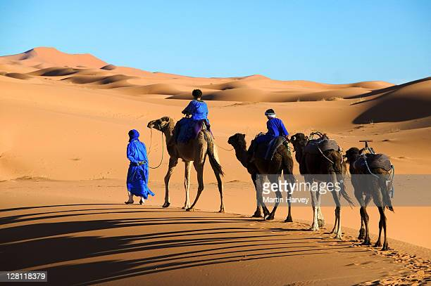 tuareg man and his children, dressed in traditional blue robe, with camels in the erg chebbi area. sahara desert. morocco - nomadic people stock pictures, royalty-free photos & images