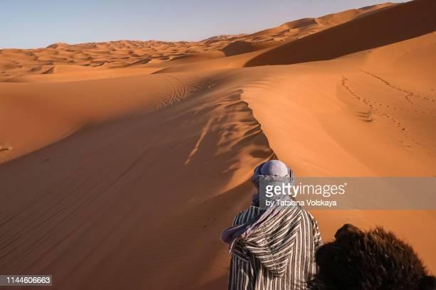 tuareg with his camel, morocco, africa - tuaregue imagens e fotografias de stock