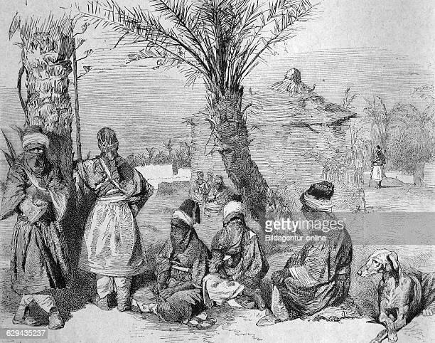 Tuaregs camp in an oasis of the sahara, algeria, historical illustration, 1877