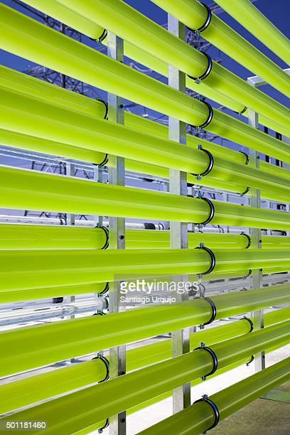 Tubular bioreactors filled green algae fixing CO2