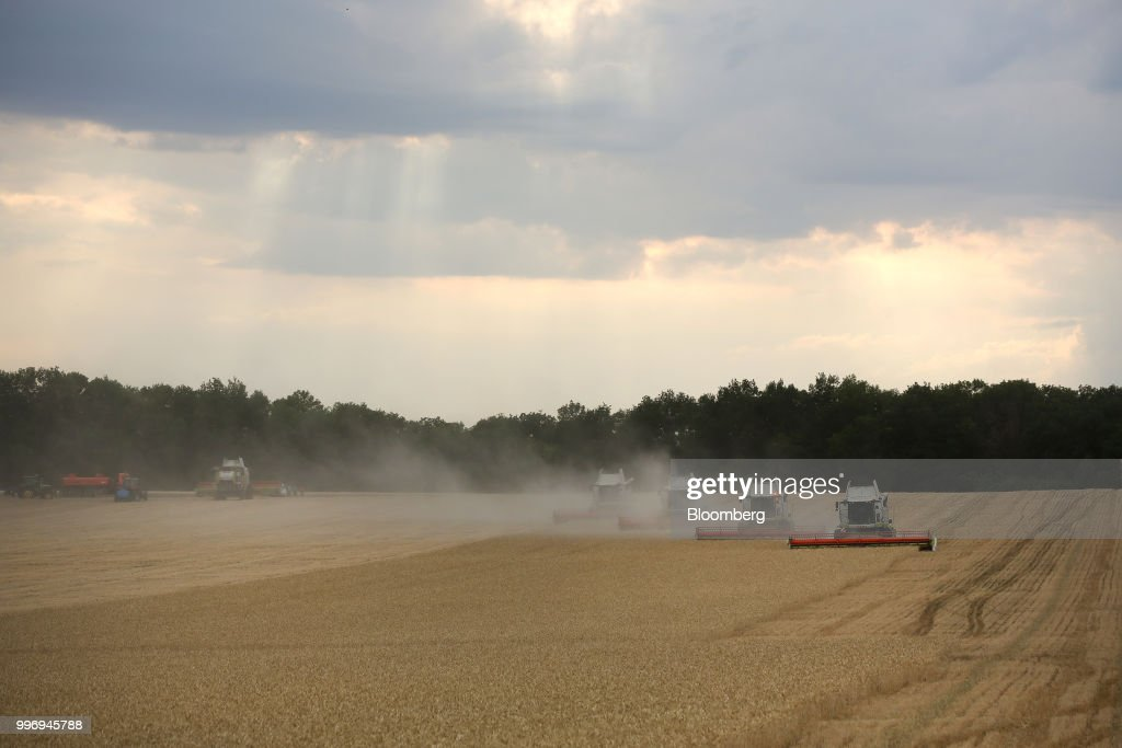 Tucano combine harvesters, manufactured by Claas KGaA, drive through a field of wheat during the summer harvest on a farm operated by Ros Agro Plc, in Kazinka village, outside Belgorod, Russia, on Wednesday, July 11, 2018. Russian wheat has dominated sales to Egypt in recent years, accounting for 78 percent of total purchases in the 2017-18 season. Photographer: Andrey Rudakov/Bloomberg via Getty Images