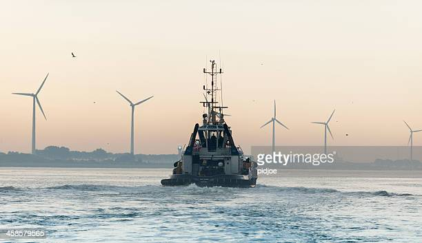 tugboat in harbour at sunrise - tugboat stock photos and pictures
