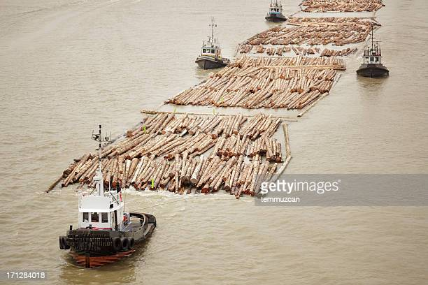 Tugboats transporting cut logs.