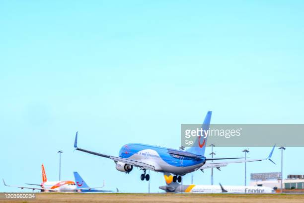 """tui boeing 737 airplane  d-atya airplane landing at airport cristiano ronaldo on the island madeira, portugal - """"sjoerd van der wal"""" or """"sjo"""" nature stock pictures, royalty-free photos & images"""