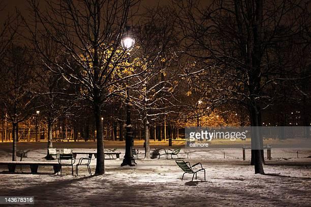 Tuileries at night