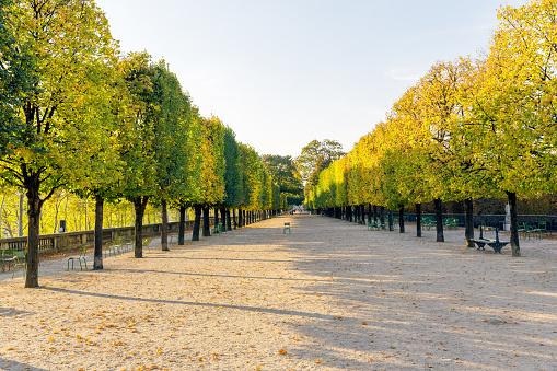 Tuileries Garden in Paris, France - gettyimageskorea