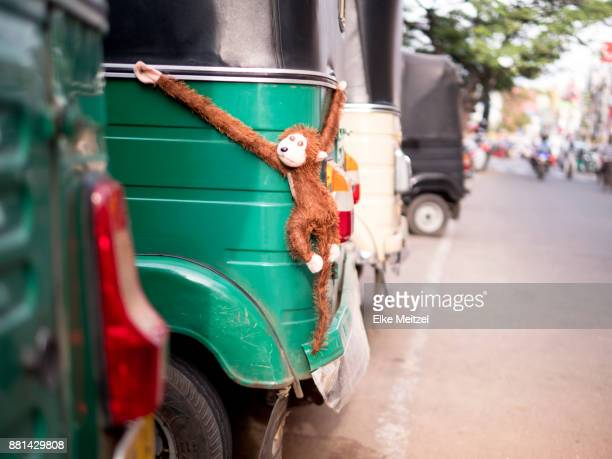 Tuk tuk in Jaffna with toy ape holding on in a comical way