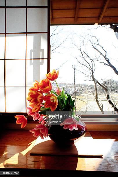 Tulip (Ikebana)