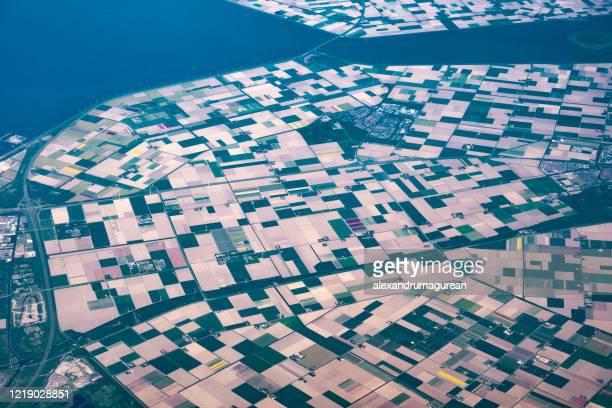 オランダのチューリップシーズン - 干拓地 ストックフォトと画像