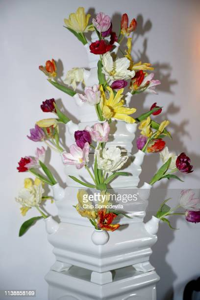 Tulipiere displays a variety of tulips at the Dutch Ambassador's residence during the Tulip Days celebration March 28, 2019 in Washington, DC. 15,000...
