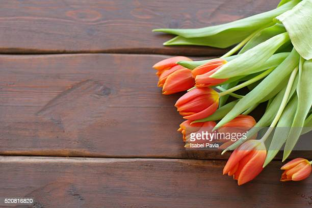 Tulips and copyspace