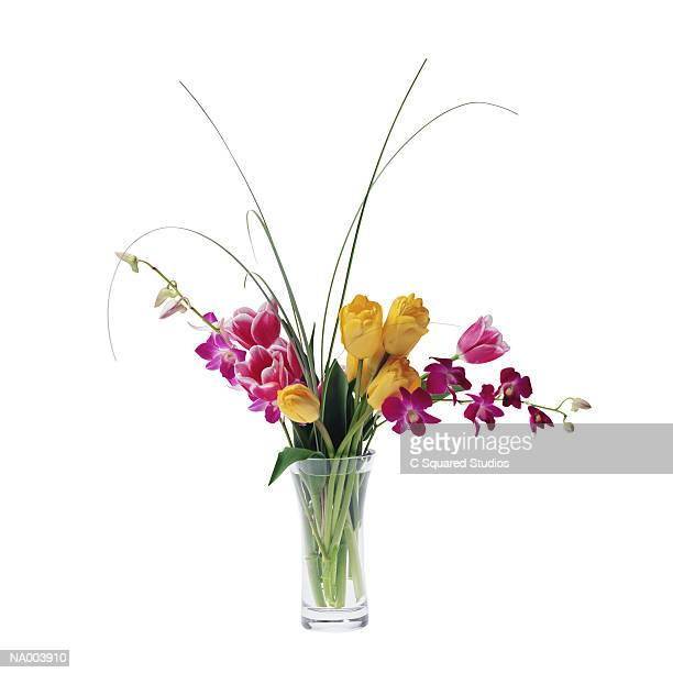 Tulips and Dendrobium Orchids in a Vase