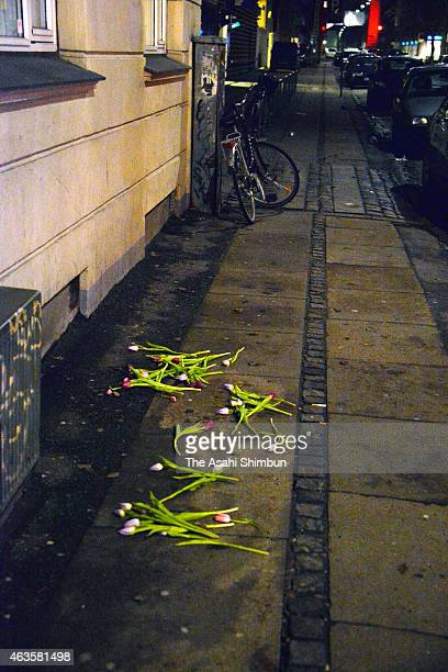 Tulips are placed at the site where the suspect was shot dead by police a day after a shooting incident on February 15 2015 in Copenhagen Denmark