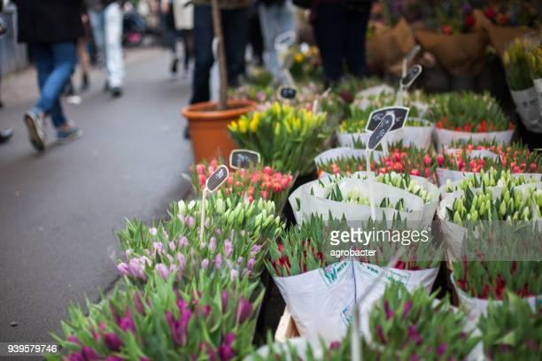 Tulpaner i Amsterdams blomstermarknad