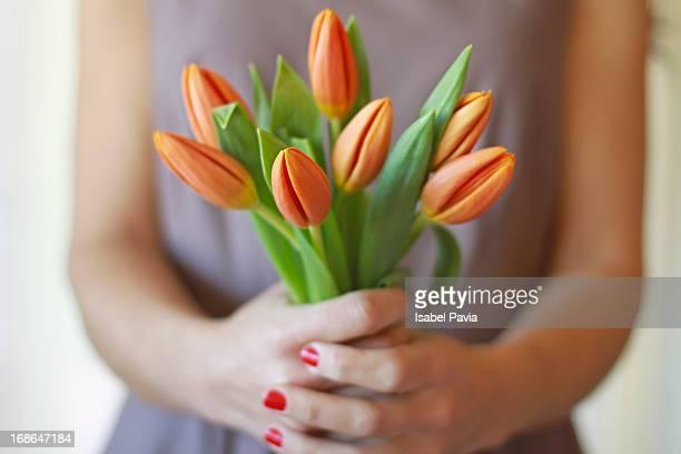 Tulips in woman's hands