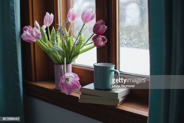 tulips  on a window sill - bouquet stock pictures, royalty-free photos & images