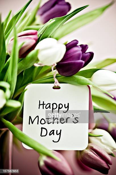 tulips with mother's day card - mothers day card stock pictures, royalty-free photos & images