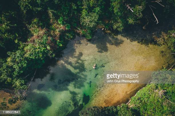 tully swimming hole - queensland foto e immagini stock
