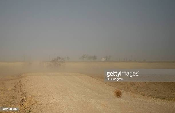 A tumbleweed blows across a county road near Springfield Tuesday April 01 2014 Massive dust Storms that bedeviled the region last year are back this...