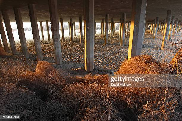 Tumbleweed lie in the sands of the Kern River which has been dried up by water diversion projects and little rain on February 4 2014 in Bakersfield...
