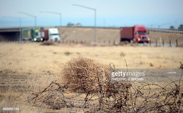 Tumbleweed rolls across a dried out landscape in central California's Kern County as trucks head south toward the Grapevine to begin the climb over...