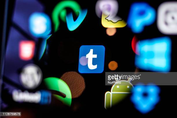 A Tumblr logo is seen on a computer screen in this photo illustration in Warsaw Poland on March 5 2019