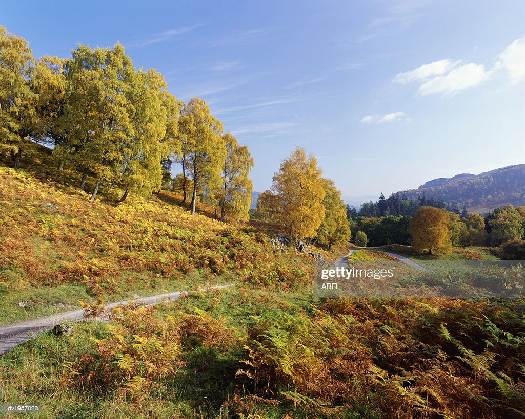 Tummel Valley in Autumn, Perthshire, Scotland : Stock Photo