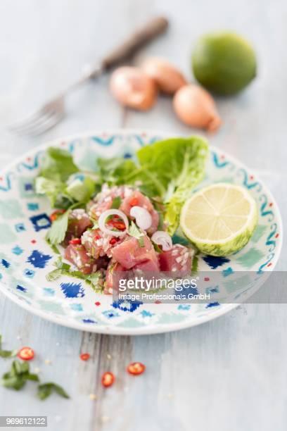 tuna fish ceviche with chilli peppers - ceviche fotografías e imágenes de stock