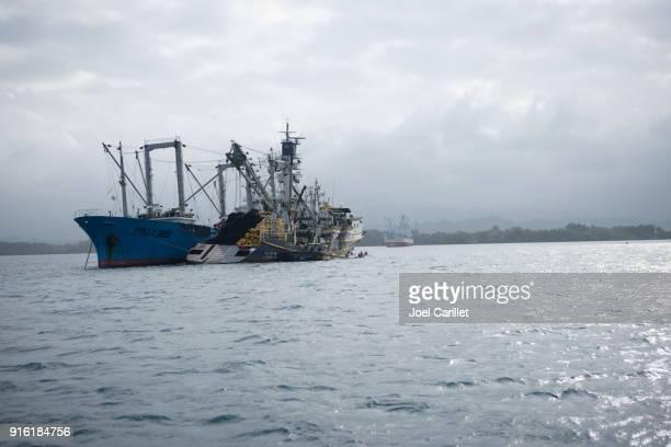 Les chalutiers de pêche de thon près de Madang, Papouasie-Nouvelle-Guinée