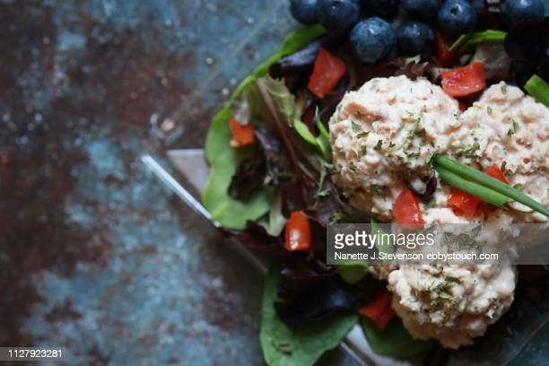 tuna salad - nanette j stevenson stock photos and pictures