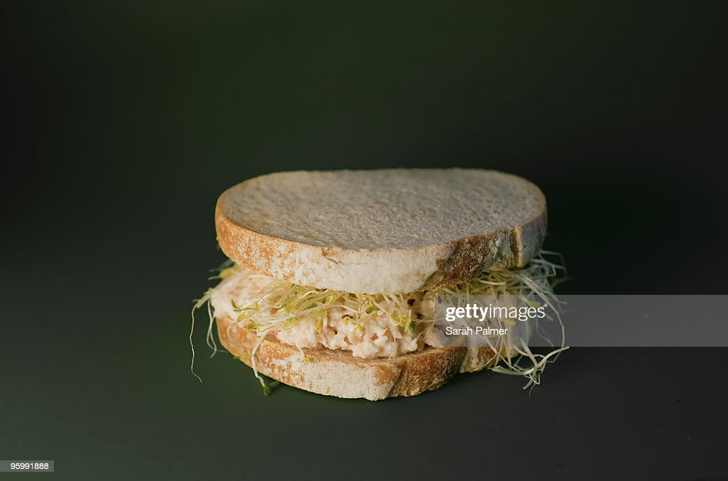 Tuna sandwich with sprouts : Stock-Foto