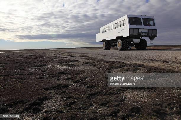 A tundra Buggy on Arctic Tundra
