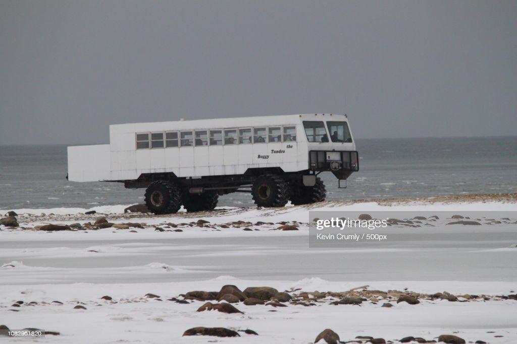 Tundra Buggy : Stock Photo