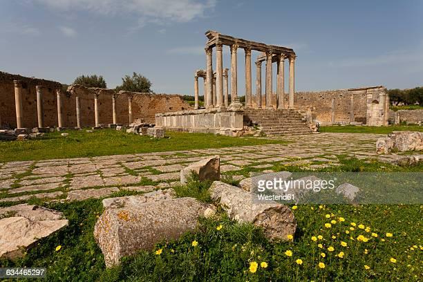 Tunisia, Beja Governorate, Roman ruin of Dougga