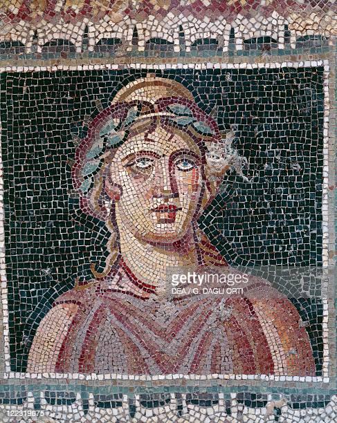 Tunisia - Jendouba Governorate - Hammam Darragi. Roman archaeological site of ancient Bulla Regia, 1st-4th century A.D. House of Amphitrite,...