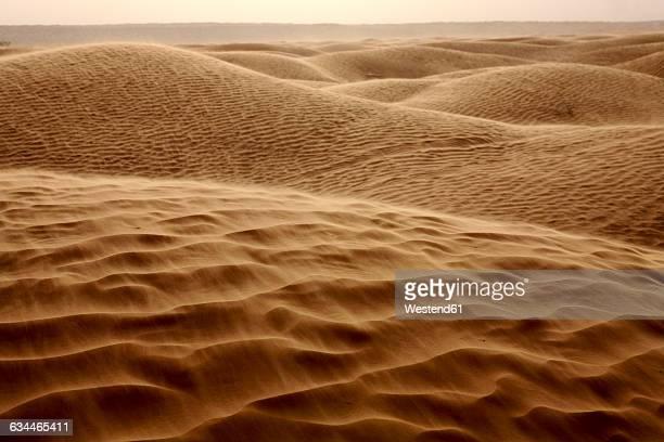 Tunisia, Sand dunes in the Sahara desert, Great Eastern Erg
