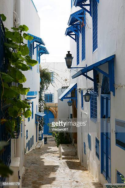 tunisia, sidi bou said, traditional residential houses - tunis stock pictures, royalty-free photos & images