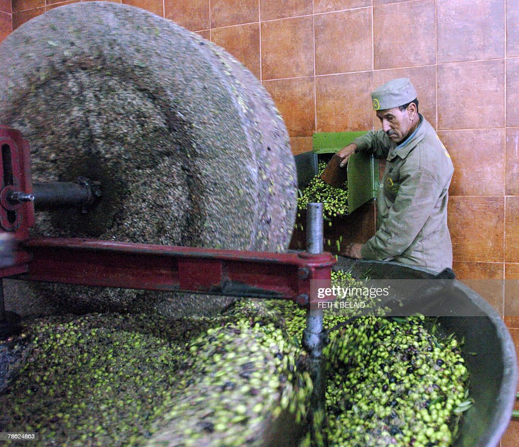 A Tunisian worker grounds olives during : News Photo
