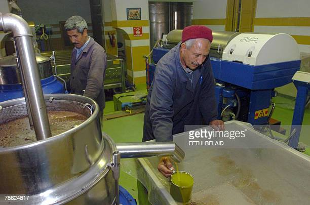 Tunisians farmers work in an olive oil factory 22 December 2007 in Sabbalet Ammar near Tunis 5 percent of the world olive trees grow around the...